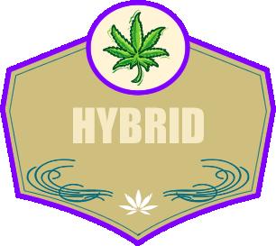 hybrid.fw